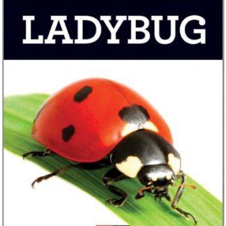 Grow with Me: Ladybug