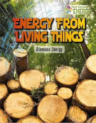 Energy from Living Things: Biomass Energy (BC4, BC5)