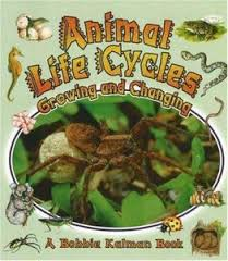 Animal Life Cycles: Growing and Changing (BCK, BC1)