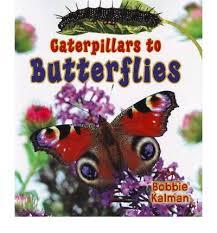 Caterpillars to Butterflies (BC2)