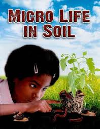 Micro Life in Soil (ecosystem, dirt, BC4)
