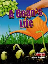 Level 1 Reading: A Bean's Life (BCK)  Bean, Beans