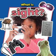 What is Sight? (Senses, Human Body)