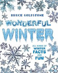 Wonderful Winter All Kinds of Winter Facts and Fun (Seasons, Christmas, Gift Ideas)
