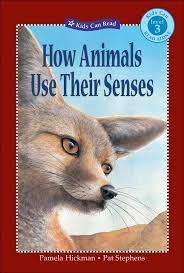 Level 3 Reading: How Animals Use Their Senses