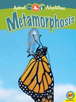 Animal Adaptations:Metamorphosis (habitat, butterflies BCK, BC1) While Supplies Last