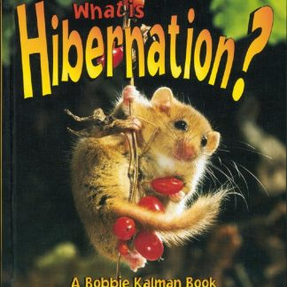 What is Hibernation? (animal, adaptation)