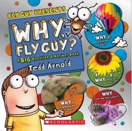 Why Fly Guy (science projects and activities)