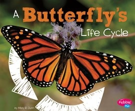 A Butterfly's Life Cycle (HCOS2, BC2)