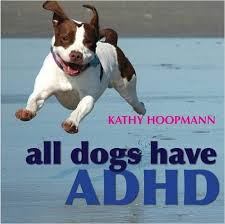 All Dogs Have ADHD (health)