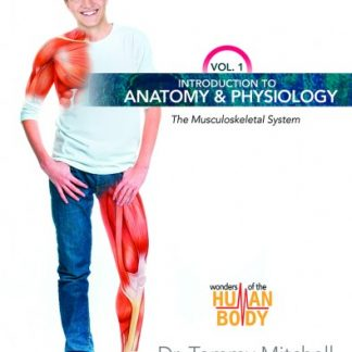 Introduction to Anatomy & Physiology Vol. 1 (Master Books) Faith-based