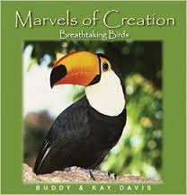 Marvels of Creation: Breathtaking Birds ( Faith-based ) (Animals)