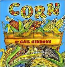 Corn (history, seed, garden, plants, First Nations)