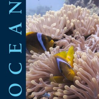 Ocean Book; Wonders of Creation (Habitat, water, faith-based)